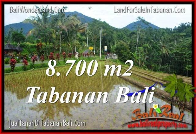 Magnificent TABANAN BALI 8,700 m2 LAND FOR SALE TJTB316