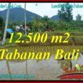 LAND SALE IN TABANAN BALI TJTB317