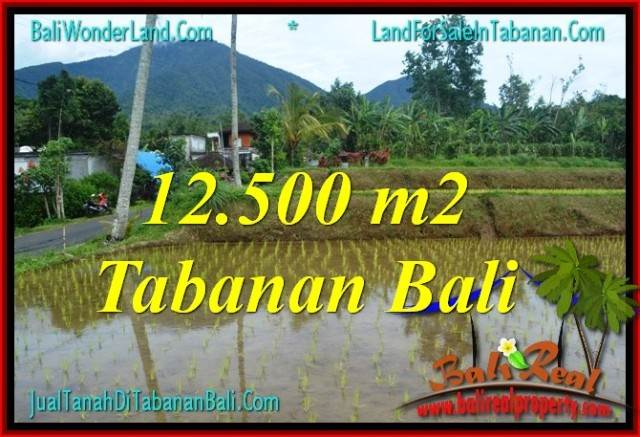 Exotic PROPERTY 12,500 m2 LAND IN TABANAN FOR SALE TJTB317