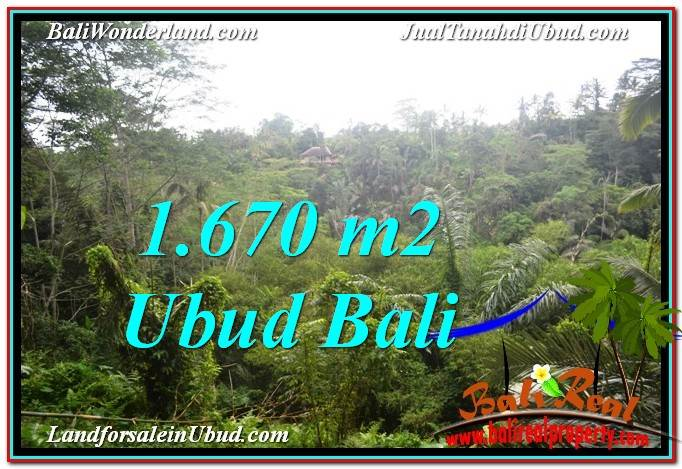 Affordable PROPERTY 1,670 m2 LAND FOR SALE IN Ubud Payangan TJUB569