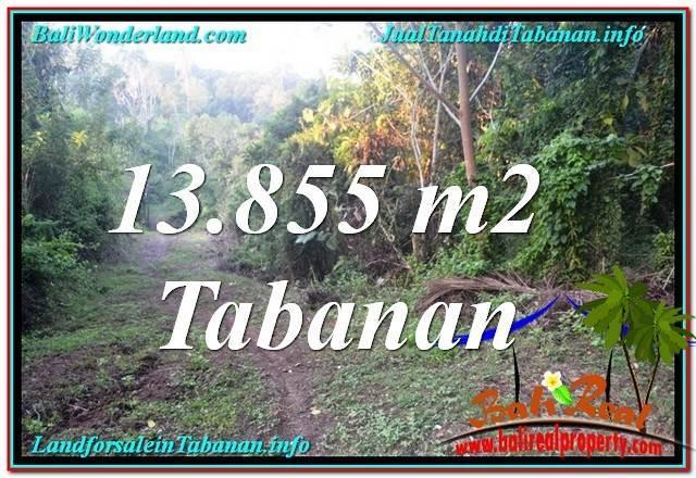 Magnificent PROPERTY TABANAN BALI LAND FOR SALE TJTB335