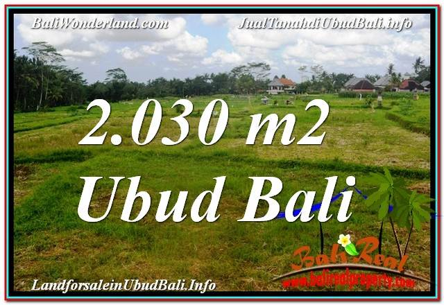 FOR SALE Beautiful 2,030 m2 LAND IN UBUD BALI TJUB623