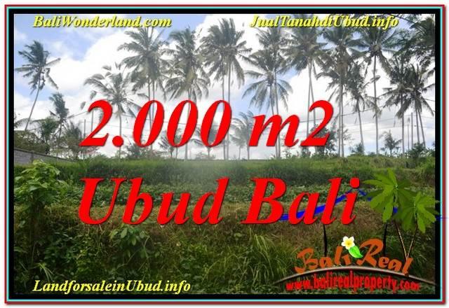 Affordable PROPERTY 2,000 m2 LAND FOR SALE IN Ubud Pejeng TJUB625