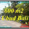 600 m2 LAND SALE IN UBUD TJUB644