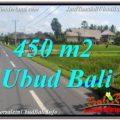 Exotic 450 m2 LAND SALE IN UBUD BALI TJUB647