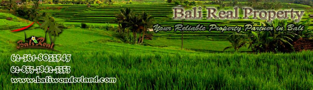 Land for sale in Ubud 8,100 sqm with natural view