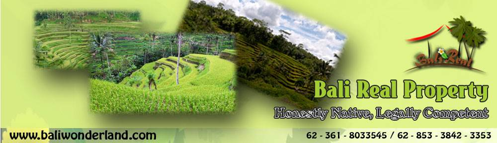 Land for sale in Ubud Bali 700 m2 in Ubud Tegalalang